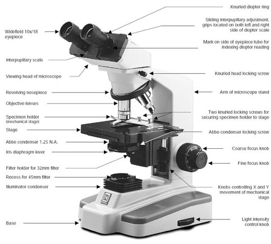 Choosing a microscope laquo Adafruit Industries ndash Makers