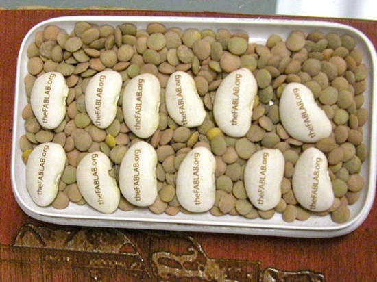 Lima Beans On Lentil Jig