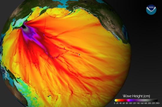 680 20110311-Tsunamiwaveheight
