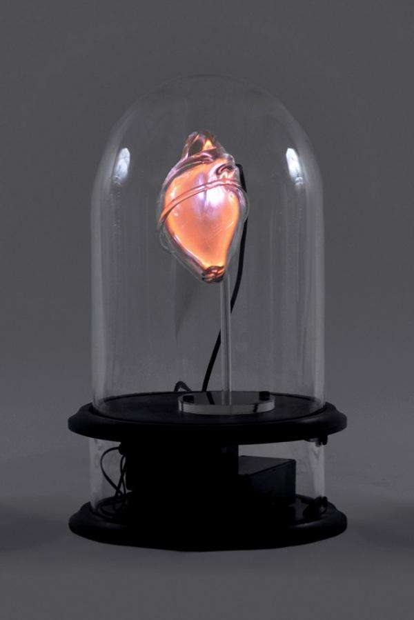 Organs-2-640X960