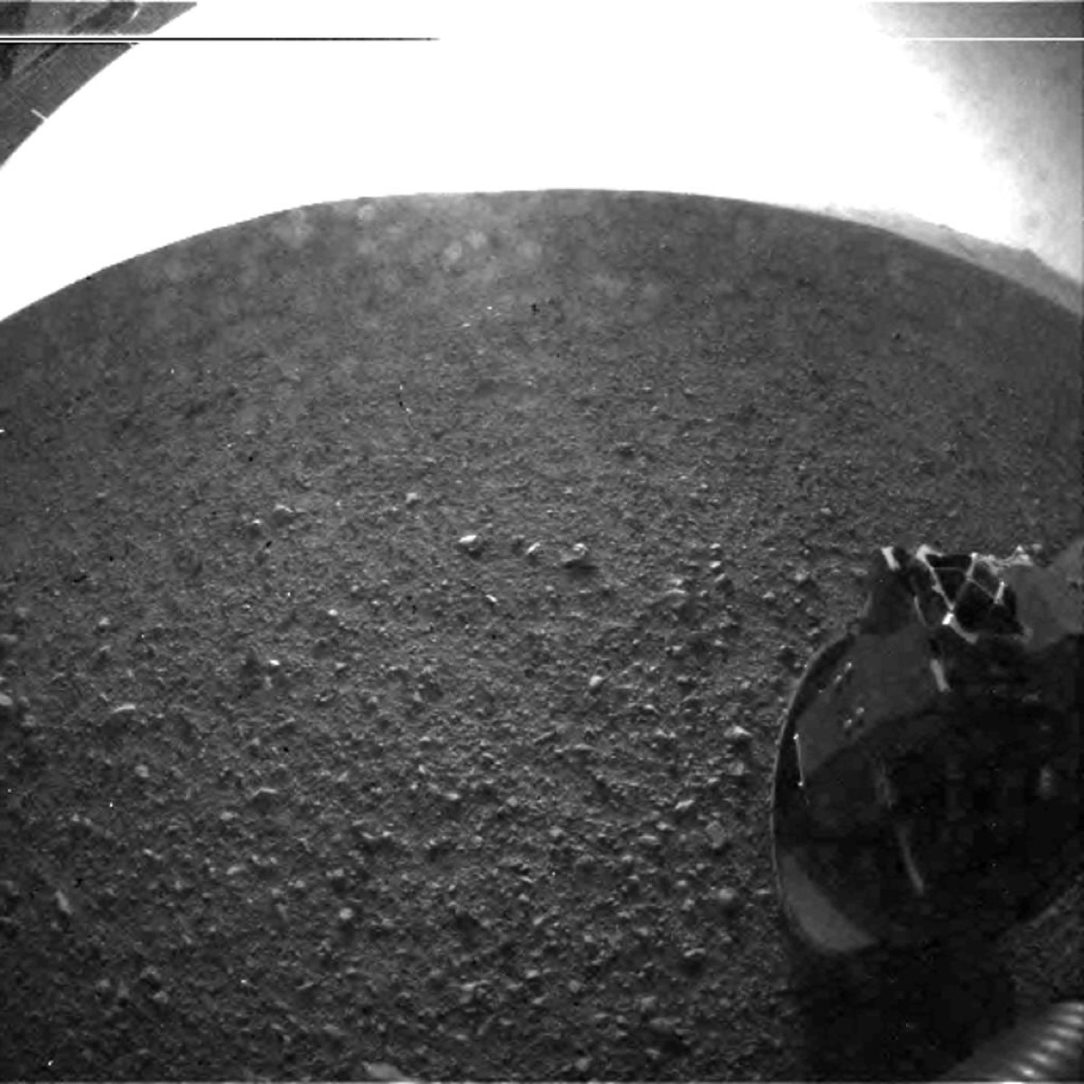 Msl5 Pia15973-Br2