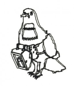 Carrier Pigeon Outline - pen-plotted