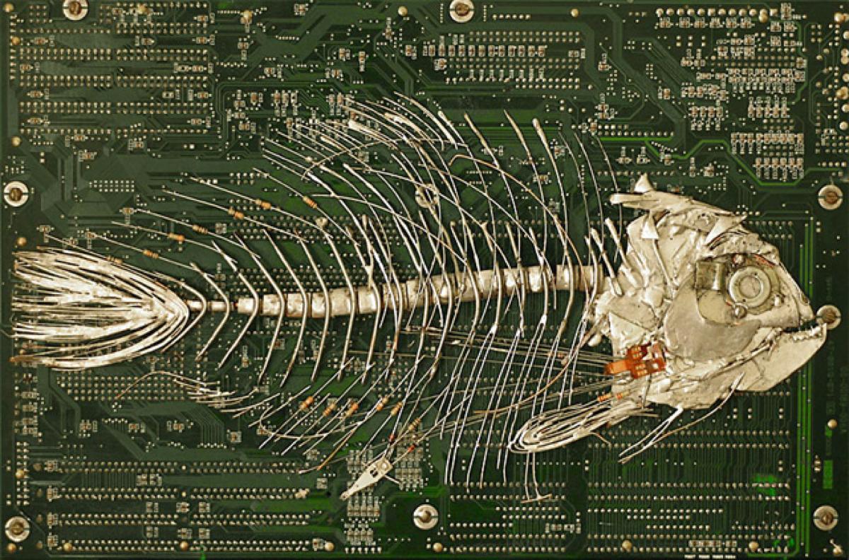 circuit board fossils by artist peter mcfarlane adafruit rh blog adafruit com