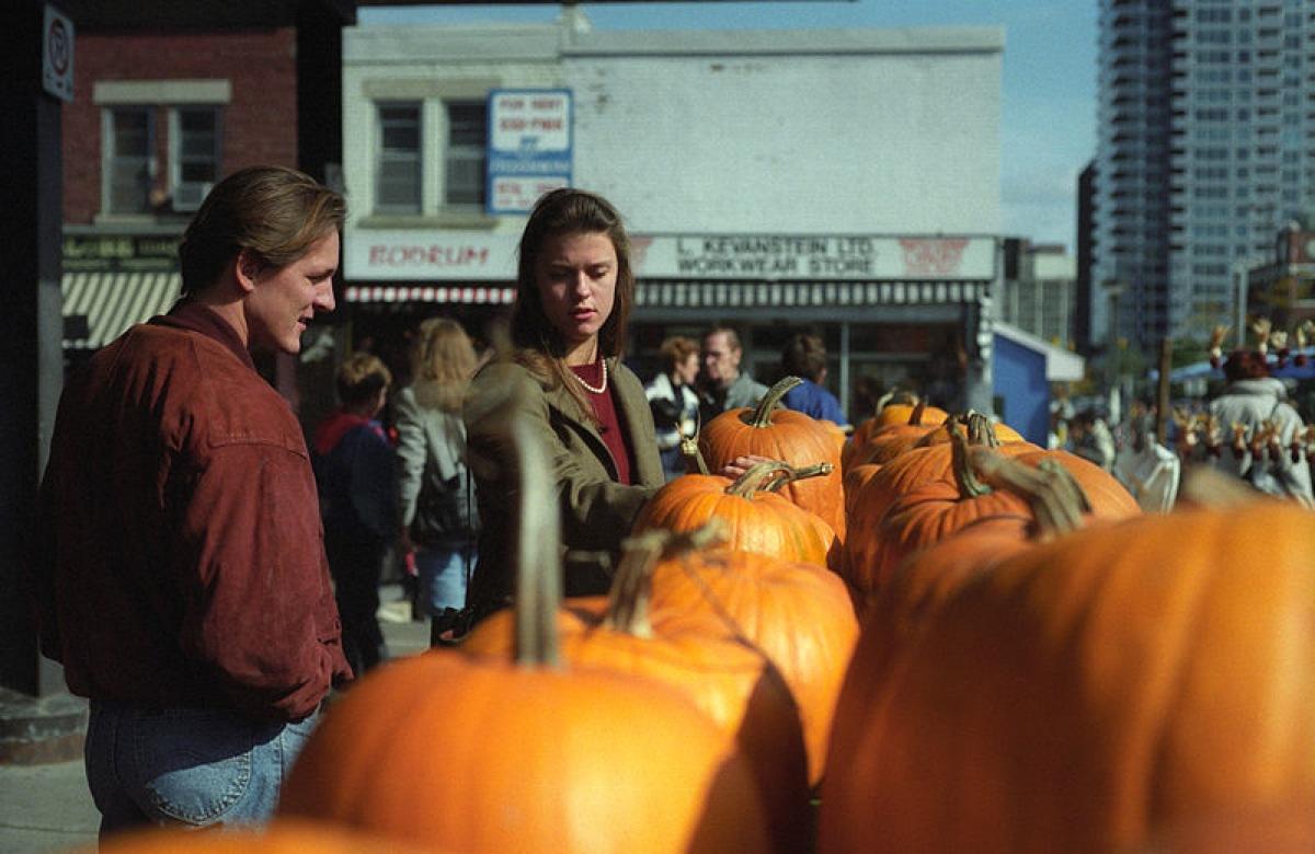 Shopping For Pumpkins In Ottawa
