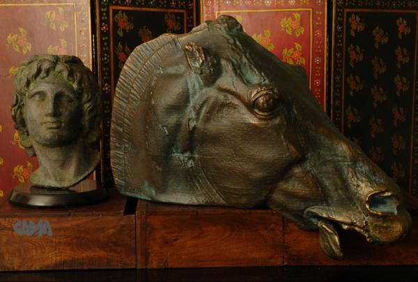 HorseSurfaceTreatment