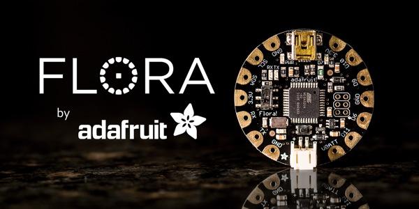 Introducing Flora2-1