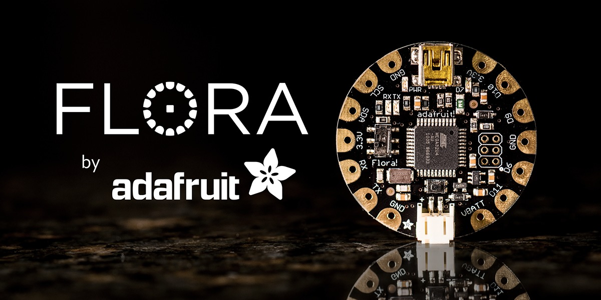 Introducing Flora2