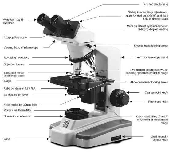 Compound-Microscope-Parts