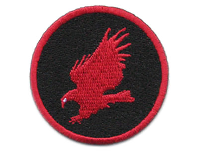 EagleSkillBadge