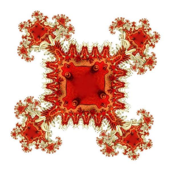 Haeckel-Asteridea-1_large