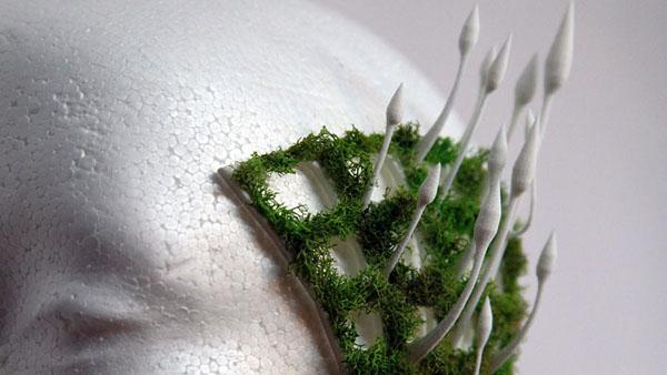 Cordy fungus lead