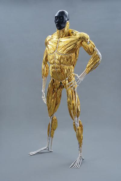 Shimmering Plastic Muscle Forms 171 Adafruit Industries