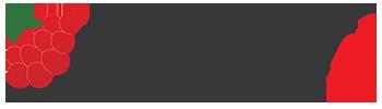 mypi-logo