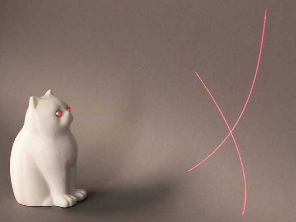Laser Cat by Someone At MakerBot