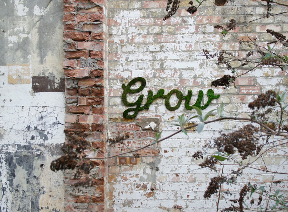 grow moss graffiti by anna garforth adafruit industries makers hackers artists. Black Bedroom Furniture Sets. Home Design Ideas
