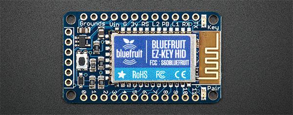 Bluefruit-crop-600px