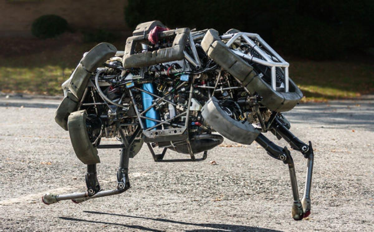 ROBOT-articleLarge.jpg