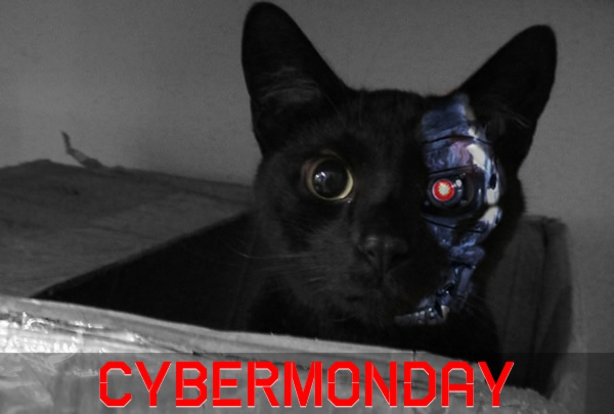 Cybermonday-2