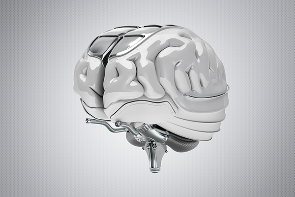 2012-12-13_Gehirn_Kunststoff