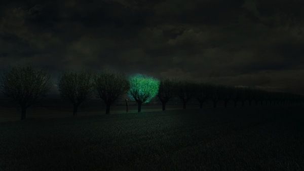Glowing Tree Roosegaarde Dezeen 644