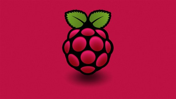 Raspberry pi red