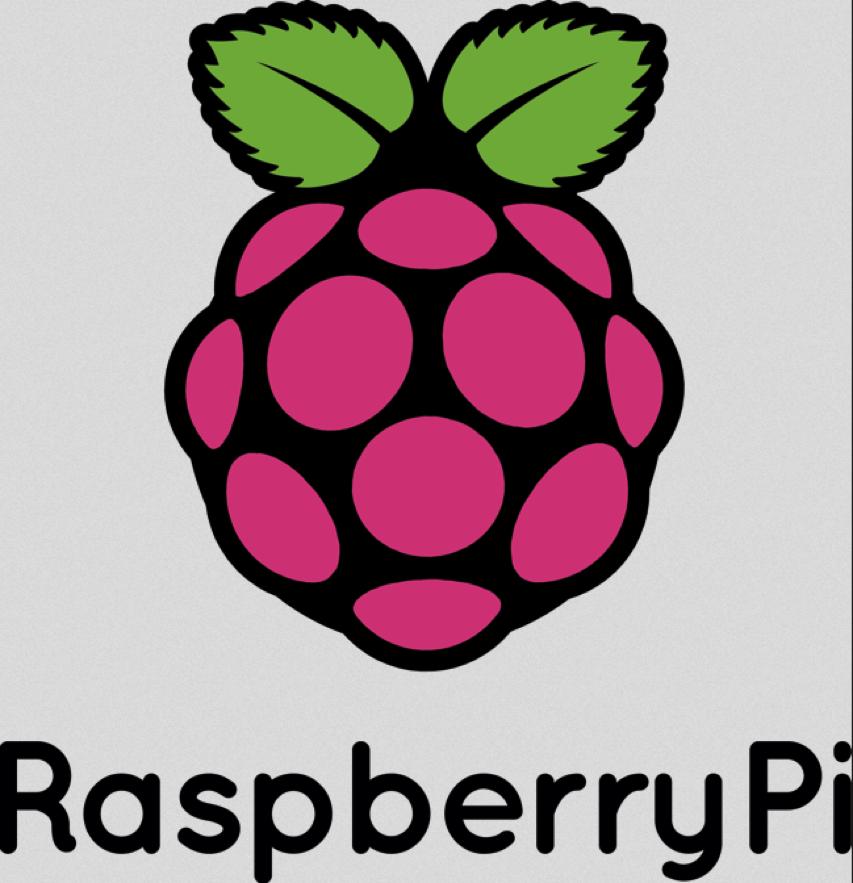 RaspberryPi Logo png PNG Image 2553×2647 pixels Scaled 25