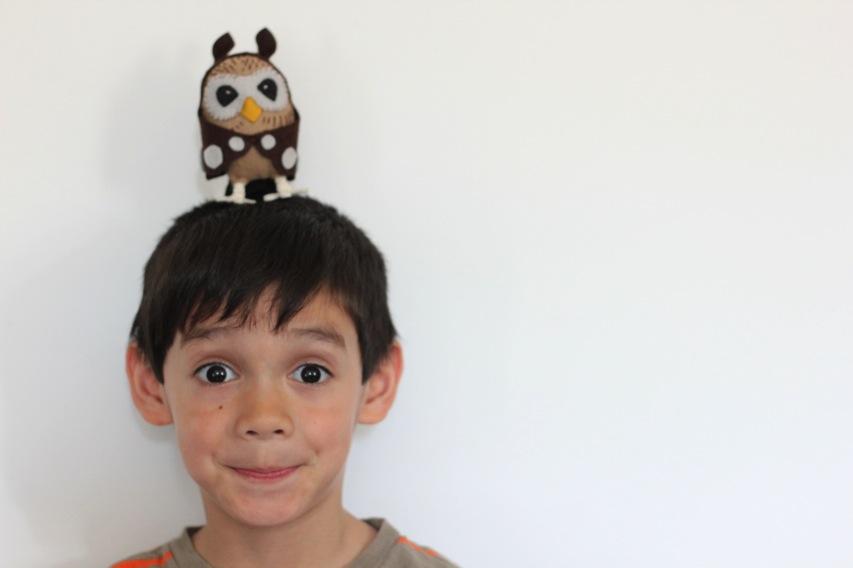 Simon owl
