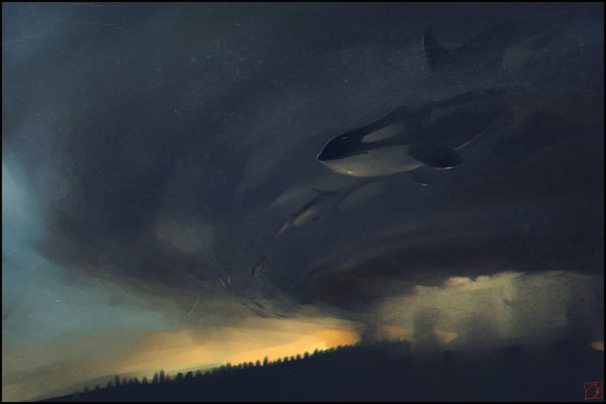 Whales killers by gaudibuendia d7fnjbb