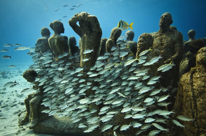 Underwater museum transition silent evolution v7 jpg 1072x0 q85 upscale