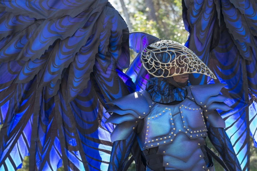 Disney Festival of Fantasy Parade Costumes Hit the Runway at Magic Kingdom: Raven