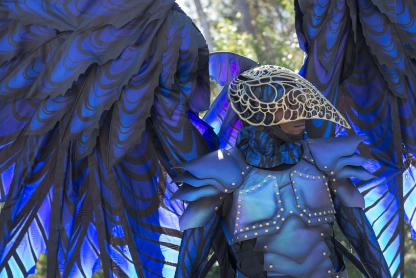 Disney Festival of Fantasy Parade Costumes Hit the Runway at Magic Kingdom: Raven