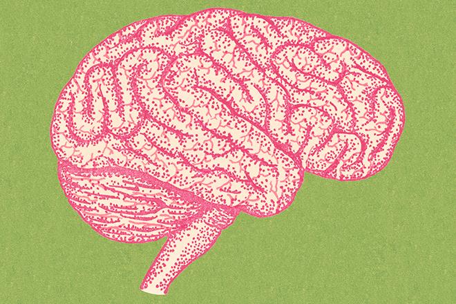 Kid brains inline