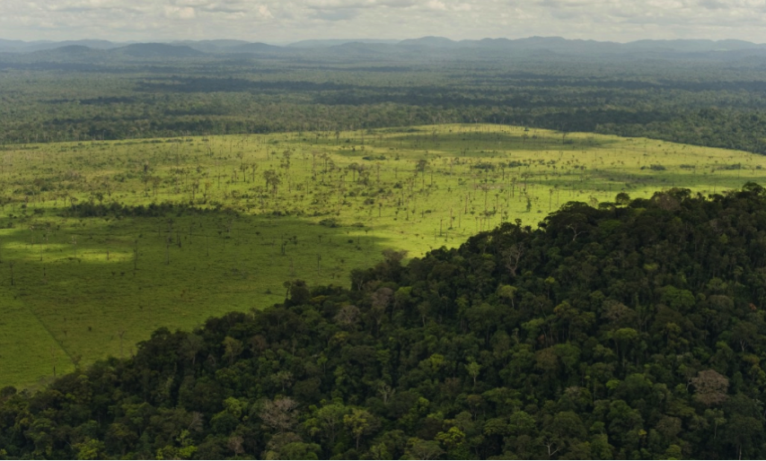 Banners and Alerts and IBM Big Data and the Amazon Rainforest Conservancy Talk
