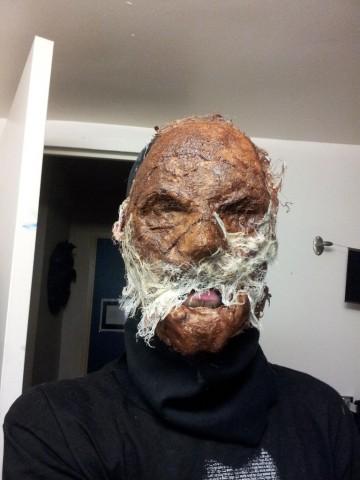 scarecrow costume 2