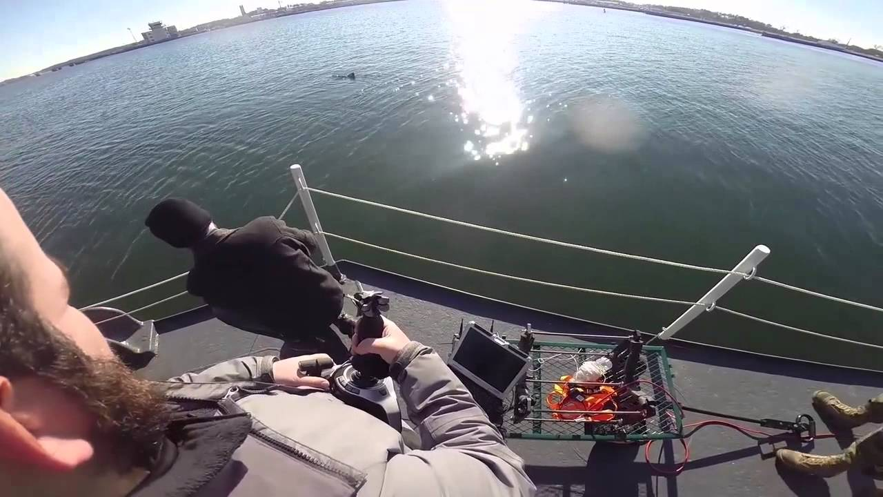 Us navy developing fish drones for spying operations