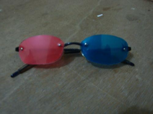 vinyl folder glasses