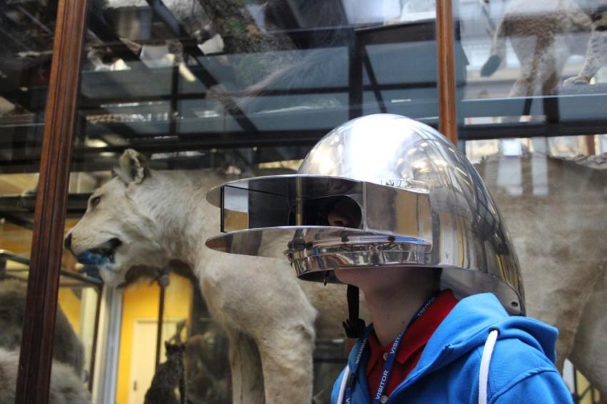 HelmetCat