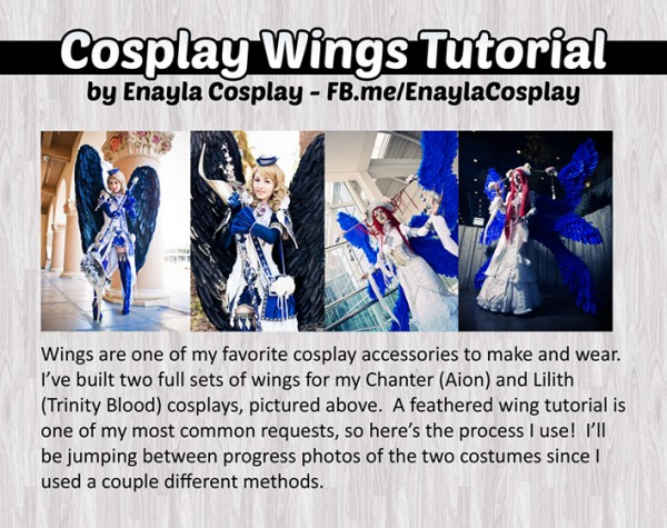 wing tutorial 1