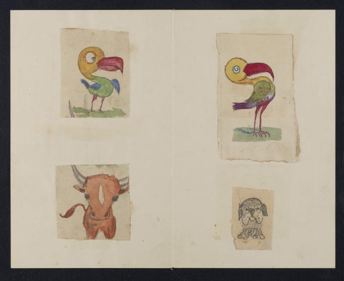 Darwin doodles