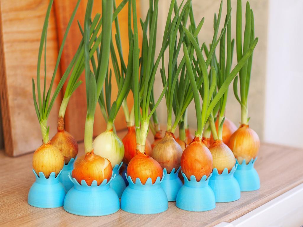 onion-pots