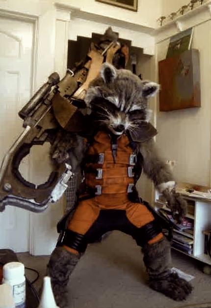 Lifelike Rocket Raccoon Costume 171 Adafruit Industries