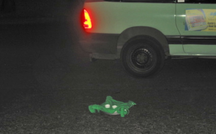 Roomba Frogger
