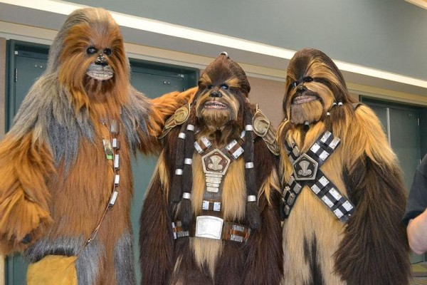 wookiee workshop 1