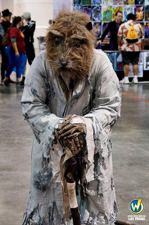 Master Splinter Costume 1