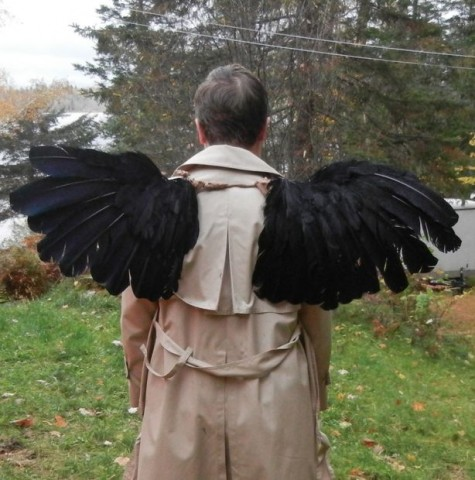 castiel wings 1