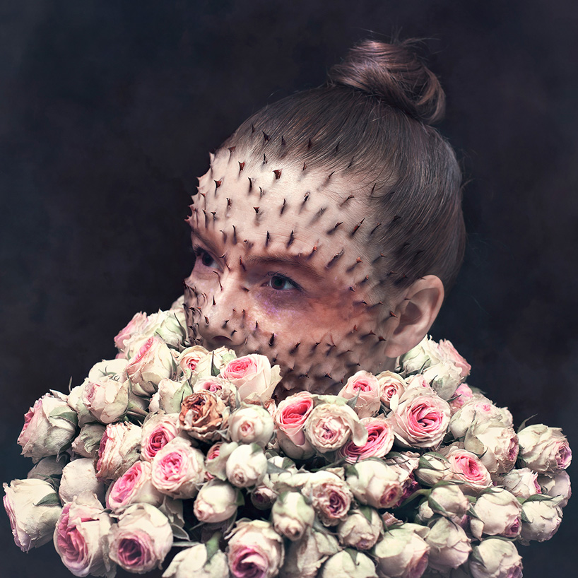 Cal redback human nature photo manipulations designboom 02