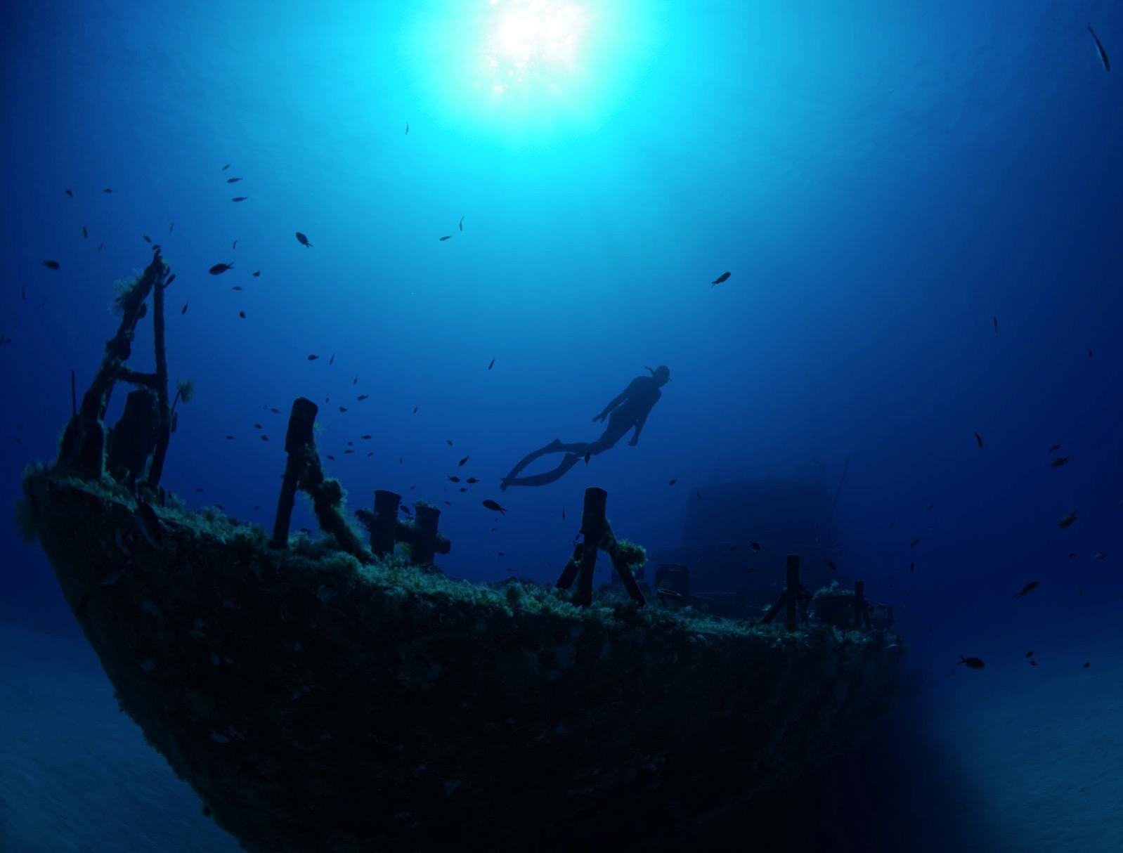 Freedive ka 0214