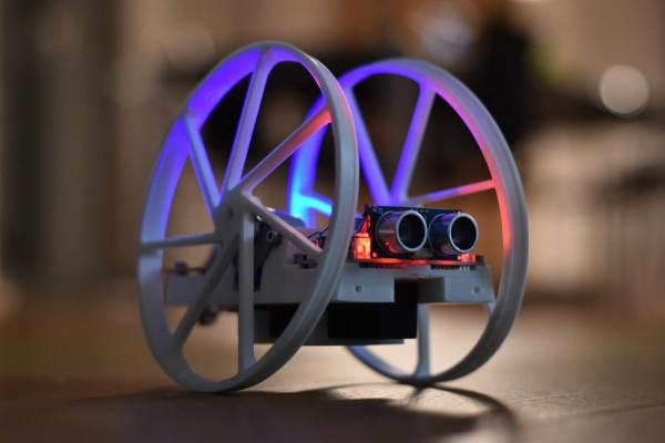 two wheel Robot