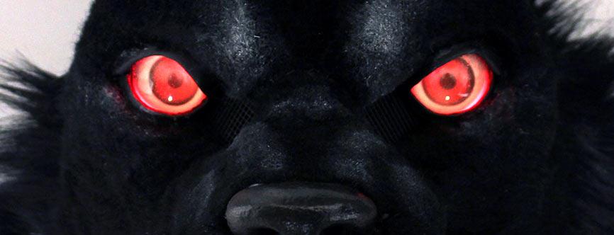 FurCon-Eyes