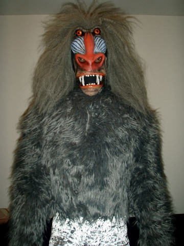 wizard of oz baboon costume 1